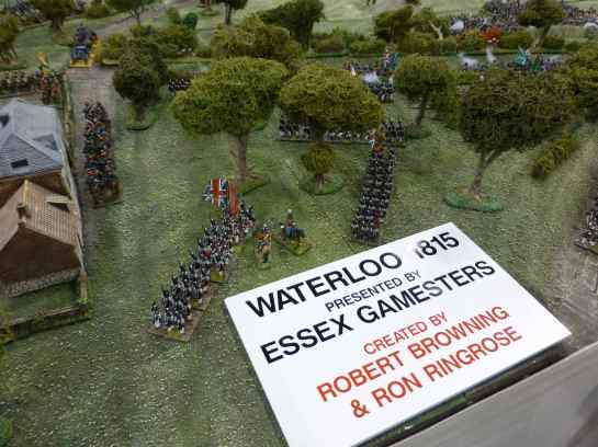 Salute 2013 - Waterloo by Essex Gamesters