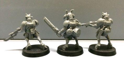 Warhammer 40k Imperial Guard Beastmen - back view