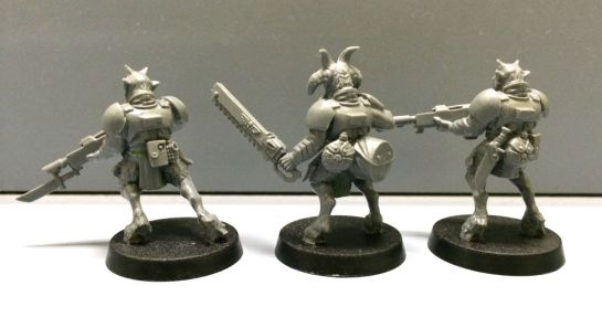 Warhammer 40k Imperial Guard Beastmen - back view