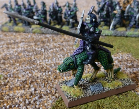 Left side view of a Dark Elf rider on Cold One with shield and lance