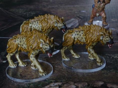 A pack of three hyenas