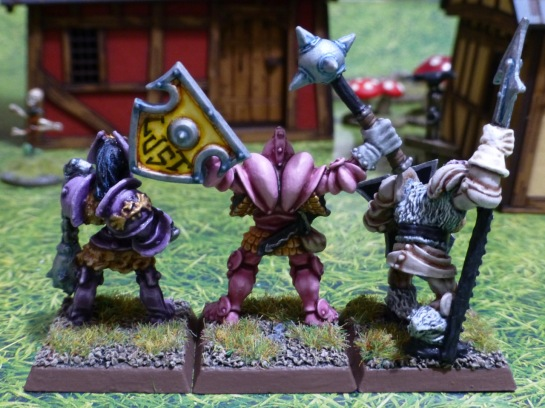 Back view of Chaos Warriors showing a shield