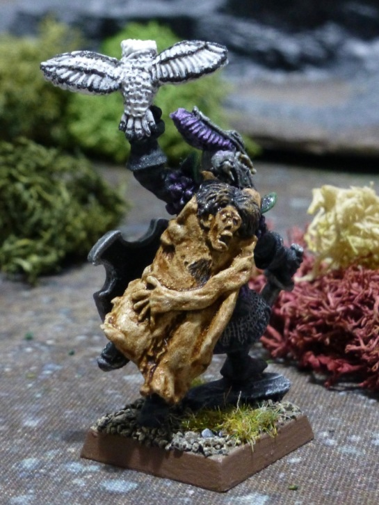 Back view of Dark Elf with cloak of human skin and owl with outstretched wings
