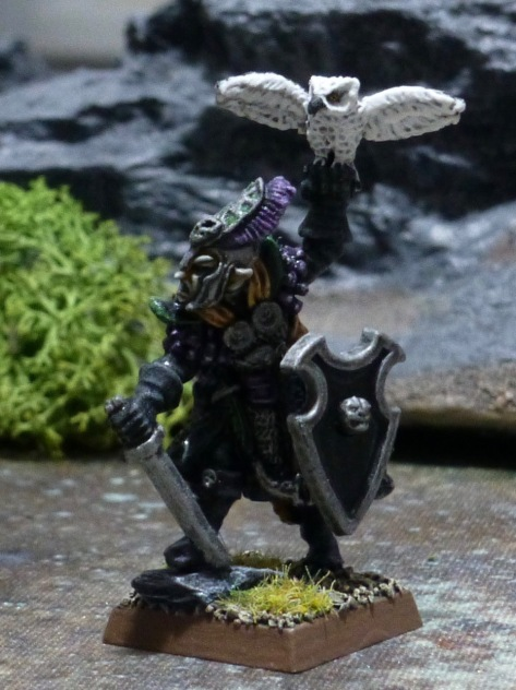 Dark Elf with sword and shield, carrying a white owl on one hand