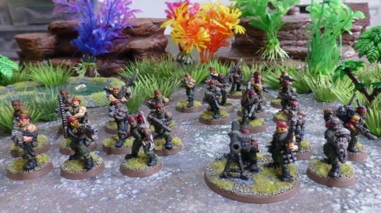 Three units of Catachan soldiers in a jungle environment