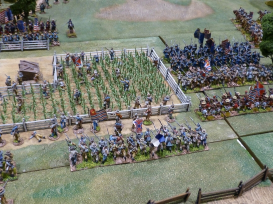 Regiments of infantry and skirmishers clashing amongst corn fields