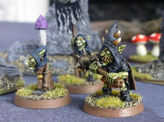 Goblin boss, shaman and banner bearer