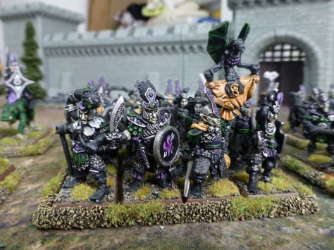 Dark Elf warriors in chainmail with purple and black livery