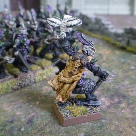 Side view of a Dark Elf lord wearing a skin cape and carrying an owl